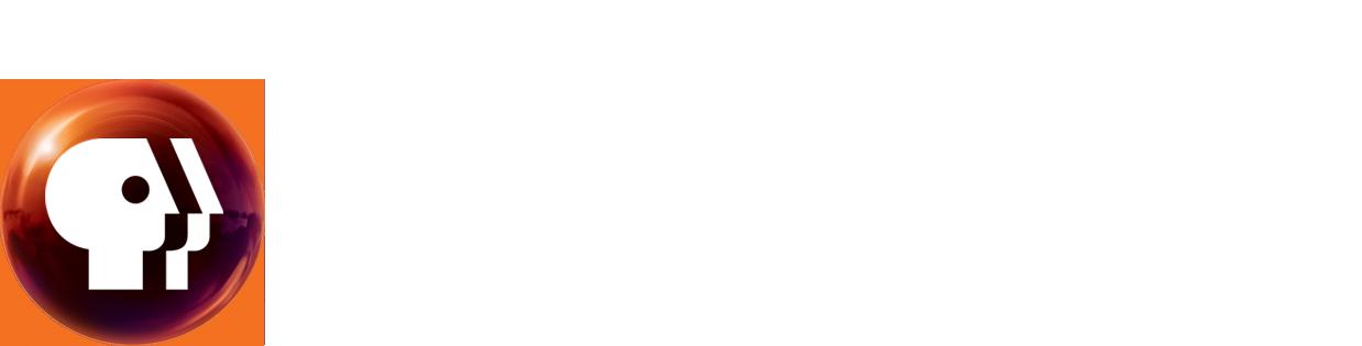 PBS Online Film Festival