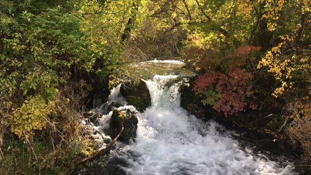 Little Spearfish Creek.jpeg