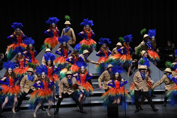 Mitchell Show Choir.jpg