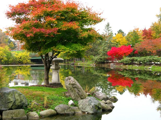 Japanese Garden and Mirror Lake in Delaware Park.