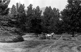 Historic view of the south lawn of the Richardson-Olmsted complex.