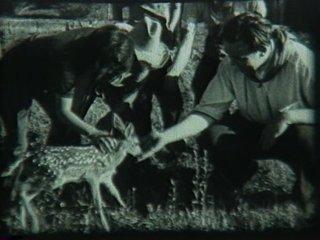 1938filmstills-05.png