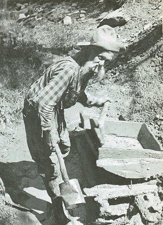 miner panning
