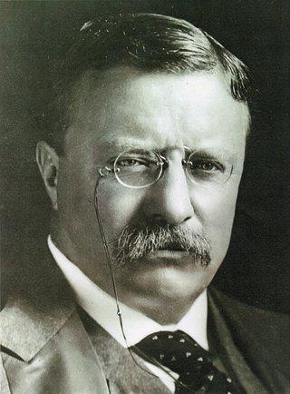 Teddy Roosevelt