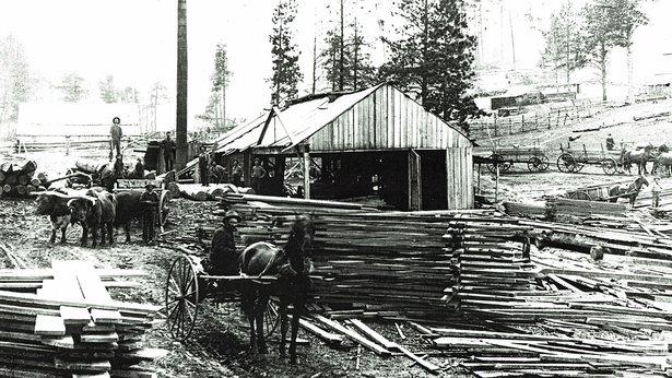 sawmill around 1880