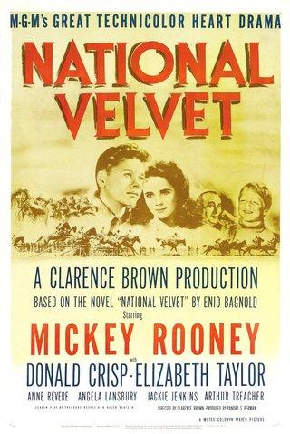 National Velvet.jpg