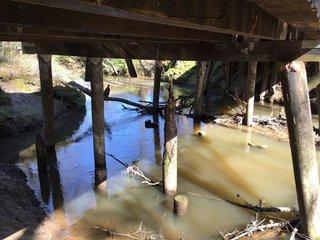 timber bridge 2.jpg