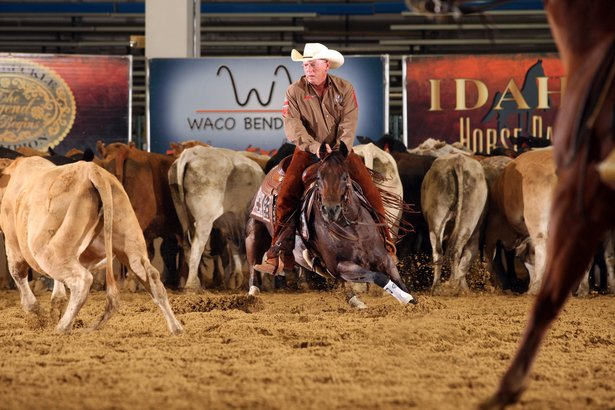 The Mercuria National Cutting Horse Association World Series of Cutting finals begin at 6:30 p.m. Saturday.
