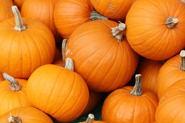 Pumpkins will be given away Friday at Amarillo Botanical Gardens.