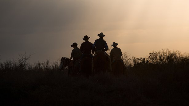 """Unbranded"" cowboys ride off into the sunset"