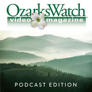 Podcast-pic_0.jpg