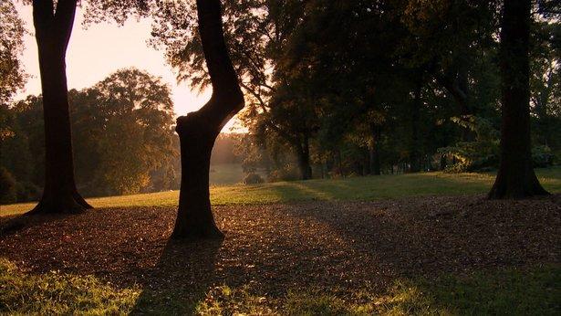 Atlanta Linear Park Alliance