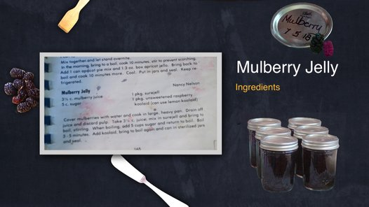 Mulberry Recipe