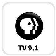 PLATFORMLOGO - PBS.png