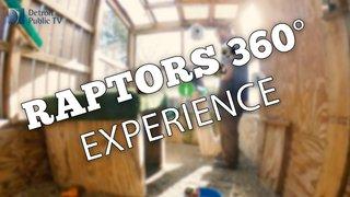 raptors_360_2.jpg