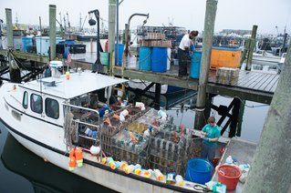 Harvesting RHode Island: Aboard the Fishing Boats