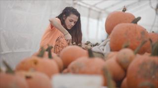 Woman carving pumpkins